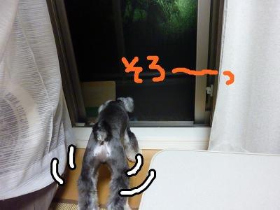 9_5+038_convert_20110905110841.jpg