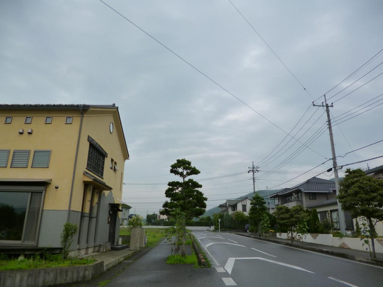 P1100887.jpg