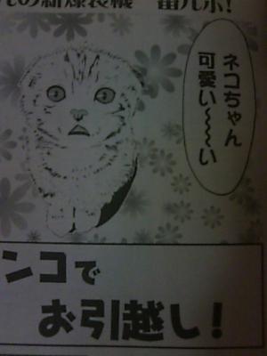 PAP_0144.jpg