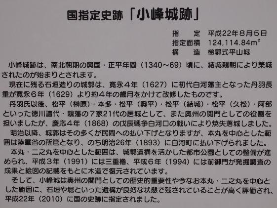 P6074180 (561x421)