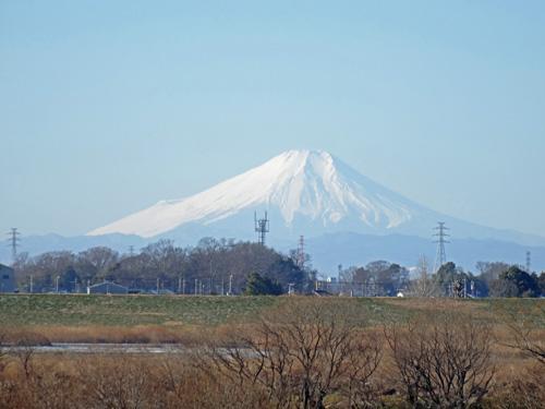 富士山@利根川の土手から