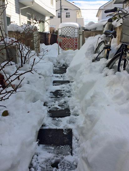 埼玉も豪雪地帯に・・