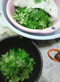 木の芽味噌2