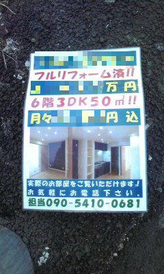 404_copy.jpg