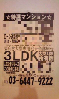521_copy.jpg