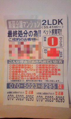 538_copy.jpg