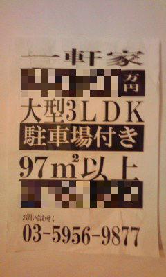 551_copy.jpg