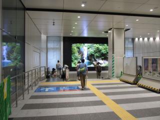 総武線・横須賀線地下ホームへ向かう階段もリニューアルされ、正面には大画面のプラズマディプレイが設置された。