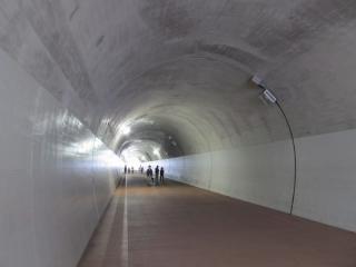 高島山トンネル内部。壁面には照明やPR用の旗を掲出する台座が設置されている。