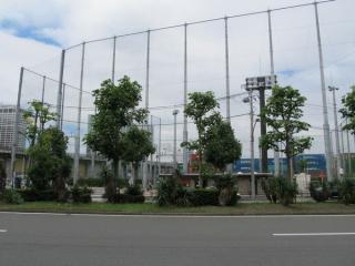 品川南ふ頭公園野球場。りんかい線の入出庫線はこのグラウンドの下を横切っている。