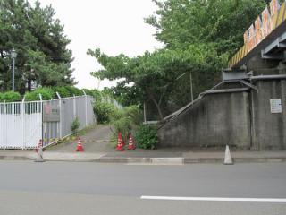 品川運河を渡り終えた後交差する道路から東京貨物ターミナル駅方向を見る。中央の荒地の下に入出庫線のトンネルが埋まっている。左のフェンスの中は東京電力大井火力発電所。