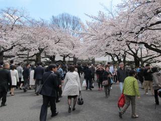 直進すると田安門。この日は日本武道館で法政大学の入学式が行われていたため学生が多かった。