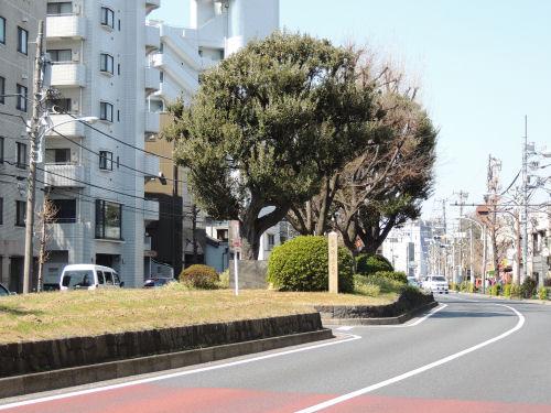 130316kenji32.jpg