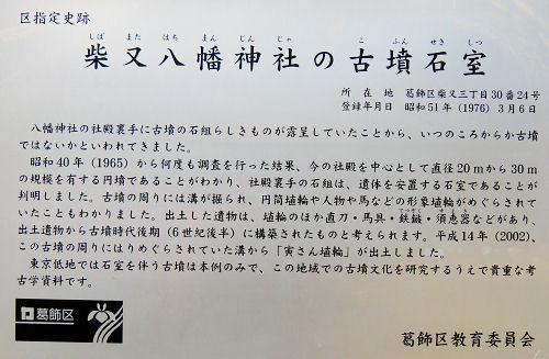 141029shiba07.jpg