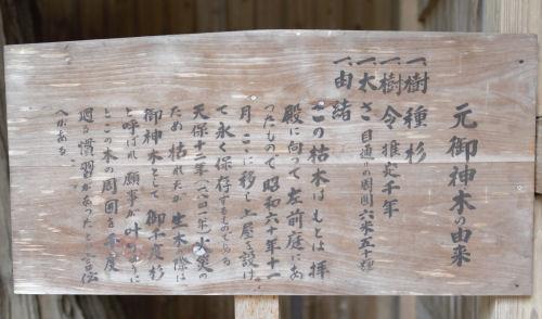 141206shizu36.jpg