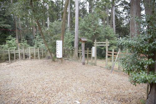 141206shizu41.jpg