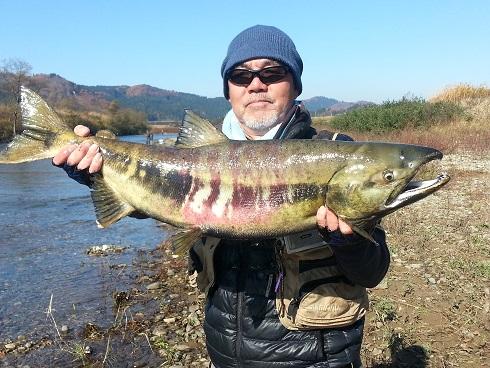 2014鮭川④