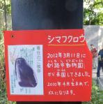 3/11釧路市動物園から着任