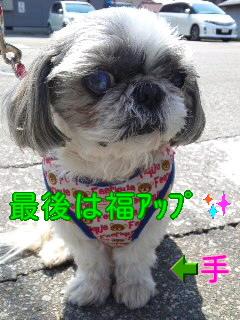 moblog_294ca5b3.jpg
