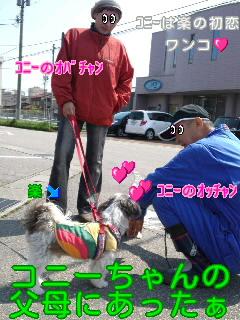 moblog_33da3aa5.jpg