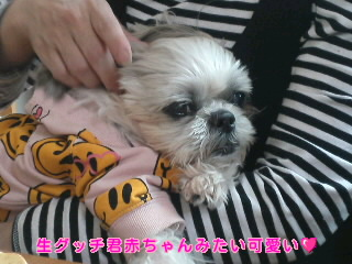 moblog_49119432.jpg