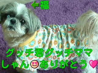 moblog_653027e0.jpg