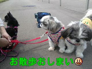 moblog_85369593.jpg