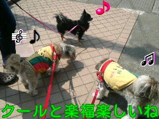 moblog_a6814929.jpg