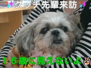 moblog_a74500a9.jpg