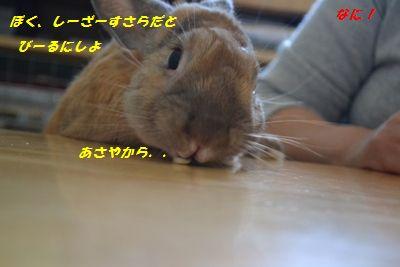 003_20130515122414.jpg