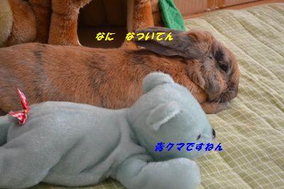 014_20130410134752.jpg