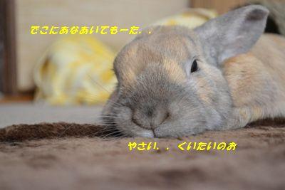 037_20130508110008.jpg
