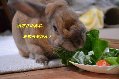 105_20130508110107.jpg