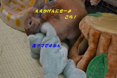 106_20130410134809.jpg