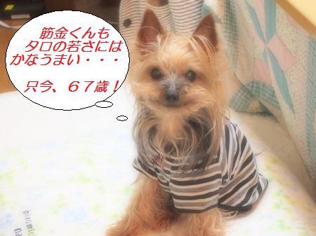 s_P5142238.jpg