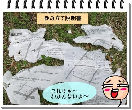DSCF7213.jpg