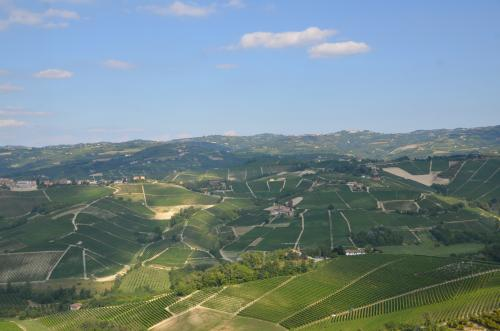 STK 3111 convert 20130904231834 - イタリア ピエモンテ州 ワイン概要