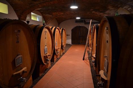STK 3411 - バルバレスコのワイナリー(TENUTE CISA ASINARI DEI MARCHESI DI GRESY)