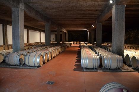 STK 3426 - バルバレスコのワイナリー(TENUTE CISA ASINARI DEI MARCHESI DI GRESY)