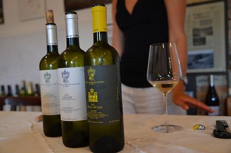 STK 3450 - バルバレスコのワイナリー(TENUTE CISA ASINARI DEI MARCHESI DI GRESY)