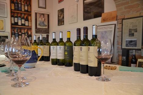 STK 3467 - バルバレスコのワイナリー(TENUTE CISA ASINARI DEI MARCHESI DI GRESY)