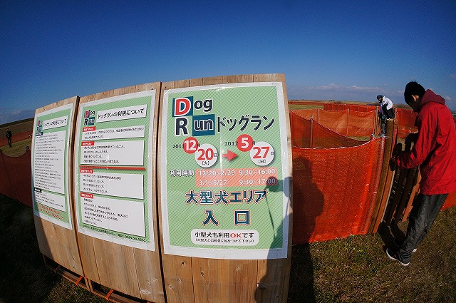 DSC00252-1.jpg