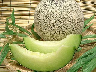 melon.jpeg