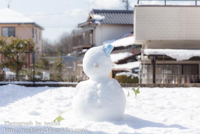 2014-02-09-IMG-7716.jpg