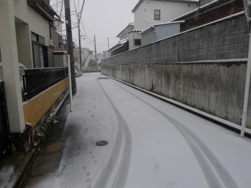 20120229・雪だ06