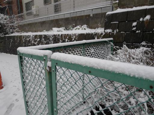 20120229・雪だ03