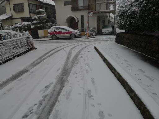 20120229・雪だ05