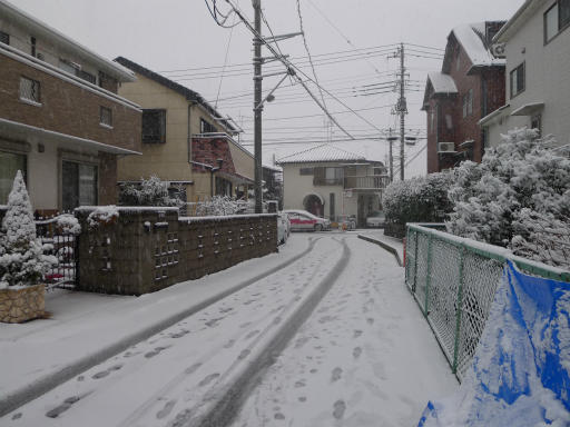 20120229・雪だ02