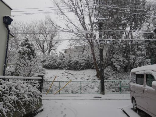 20120229・雪だ01