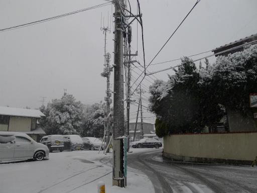 20120229・雪だ09